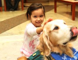 Hunter dog visiting a patient
