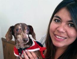 Thomas dog visiting a patient